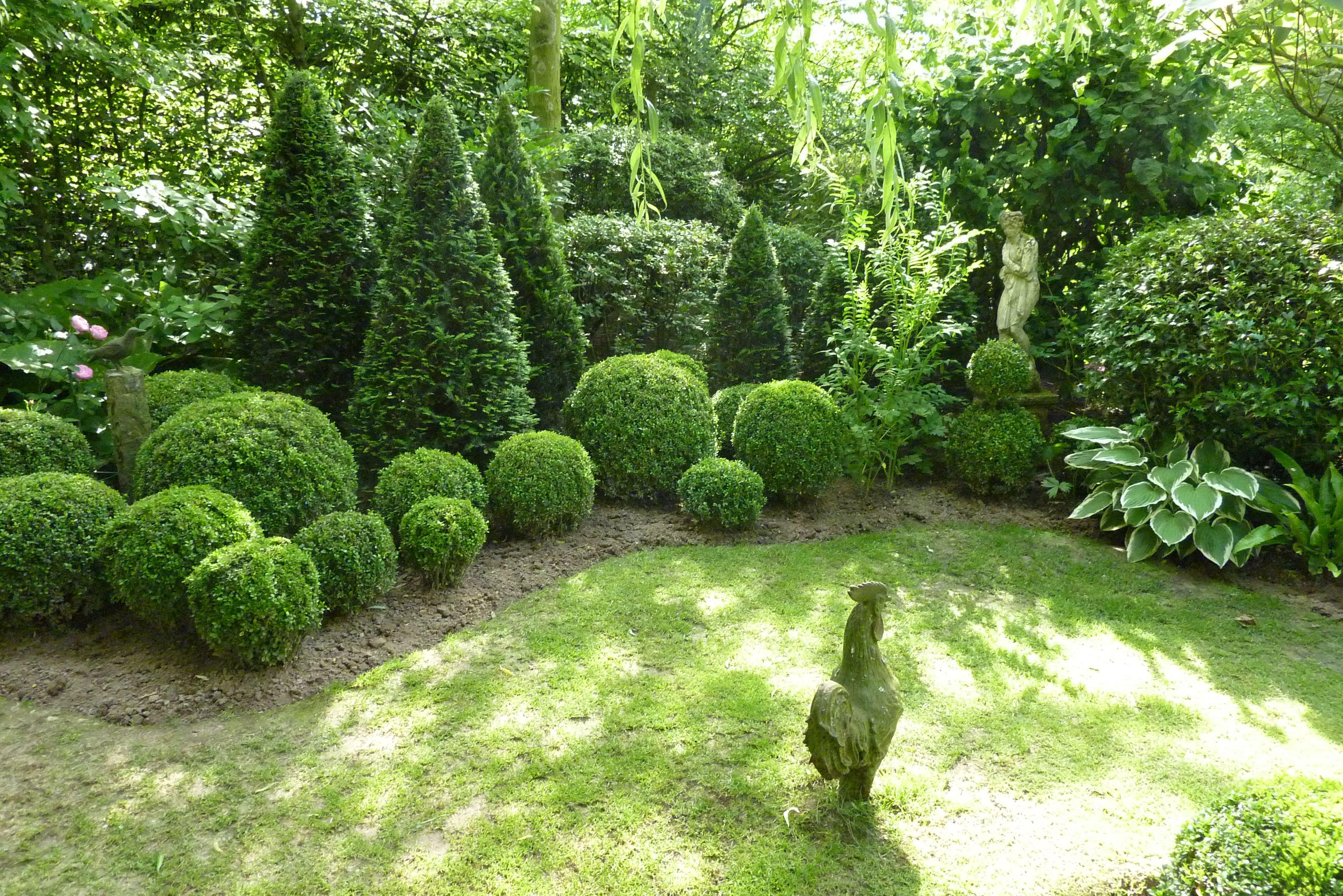 Garten Janssen diepenbeek garten janssen buchskugeln thujen garten pflanzen