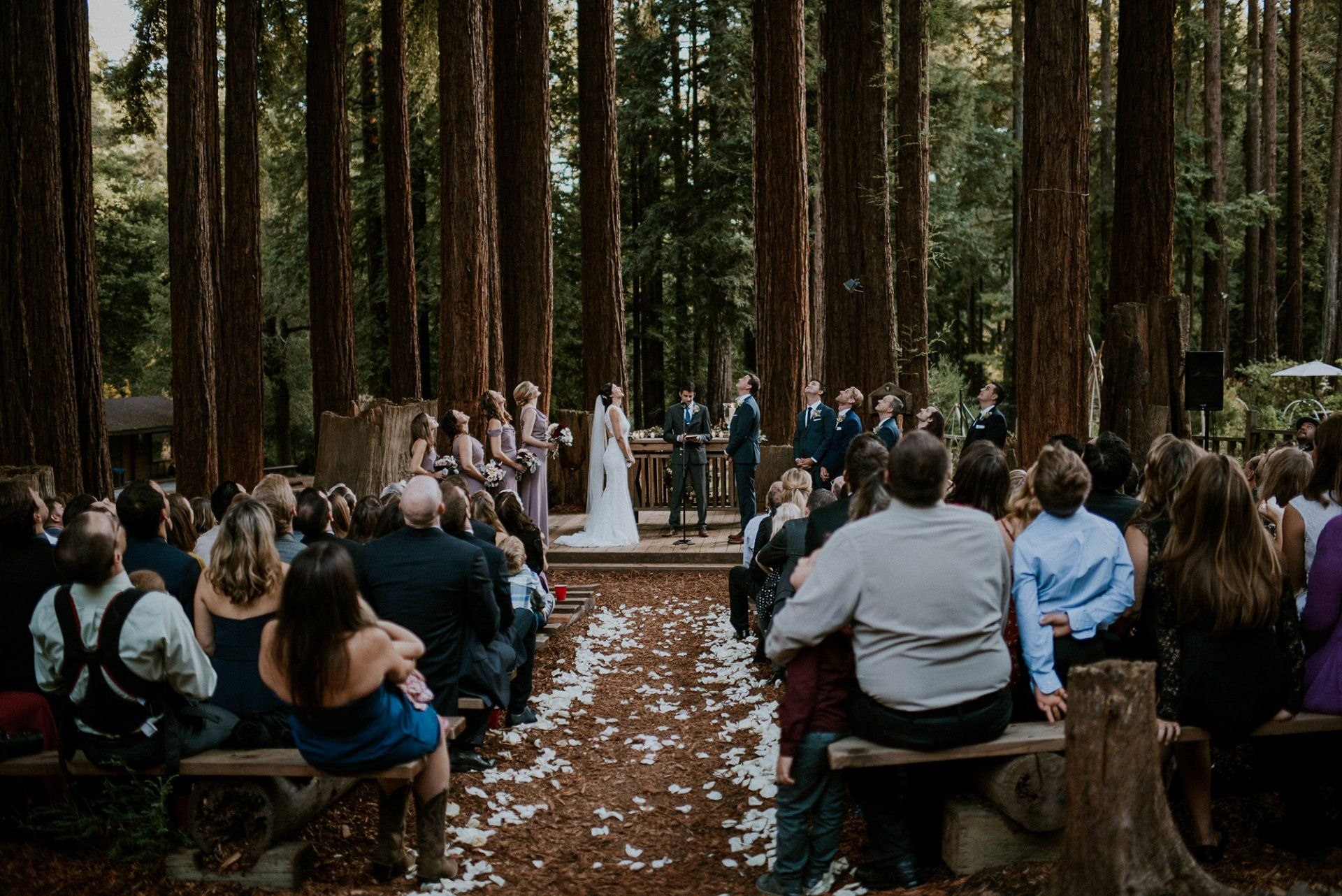 Camp Wedding In The Redwoods Alyssa Armstrong Photography Ymca Campbell