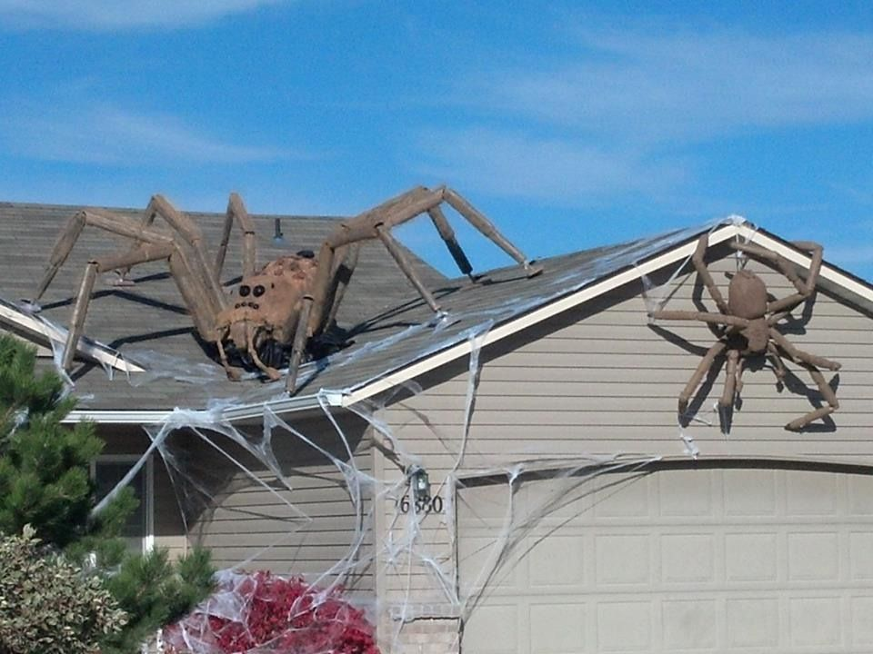 jim stop watching harry potter and trying to do spells - Giant Halloween Spider
