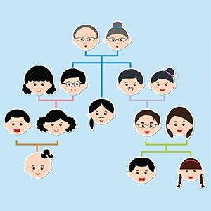 Family Tree Charts And Templates  Family Tree Chart Spanish