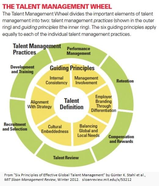 Six Principles Of Effective Global Talent Management Http Mitsmr Com Yyy0zi Talent Hr Talent Management Talent Development Management Development