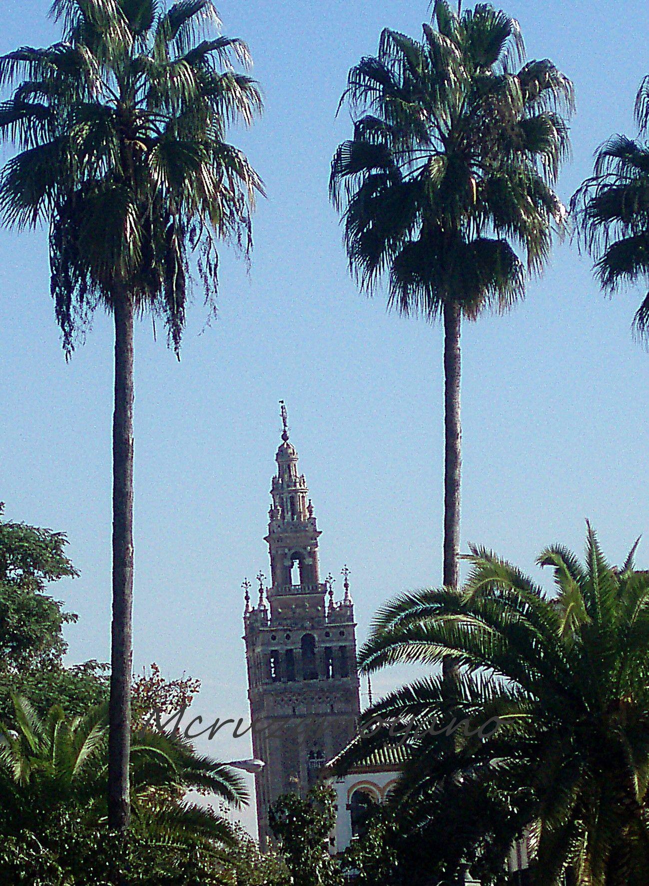 La Giralda desde el Puente Triana Sevilla