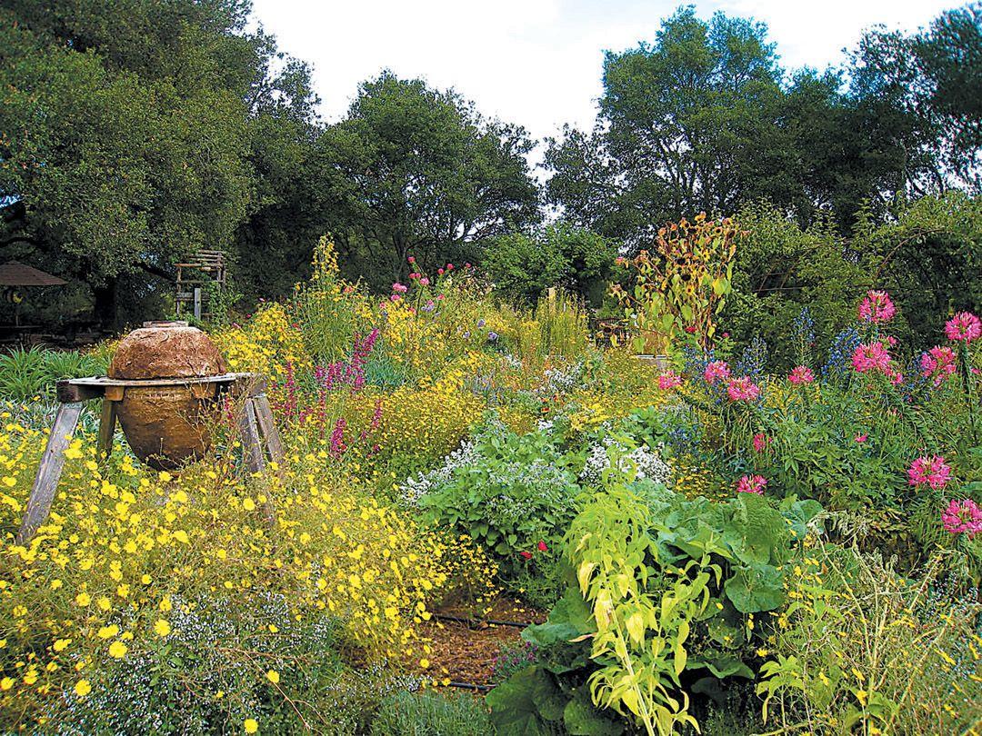 The Melissa Garden: A Sanctuary And Season Of Honey Bees