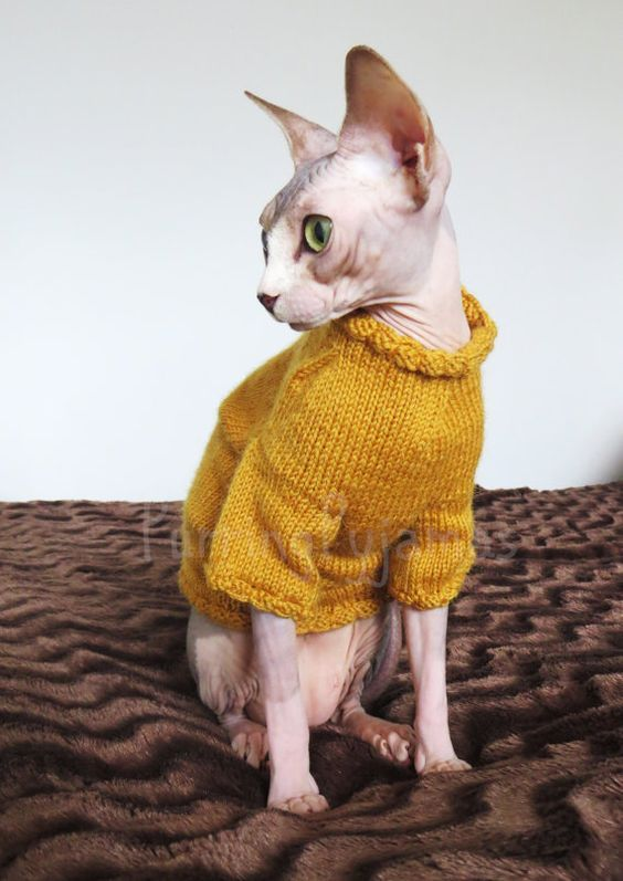 Cat Clothes Sphynx Clothes Clothes For Sphynx Sphynx Sweater