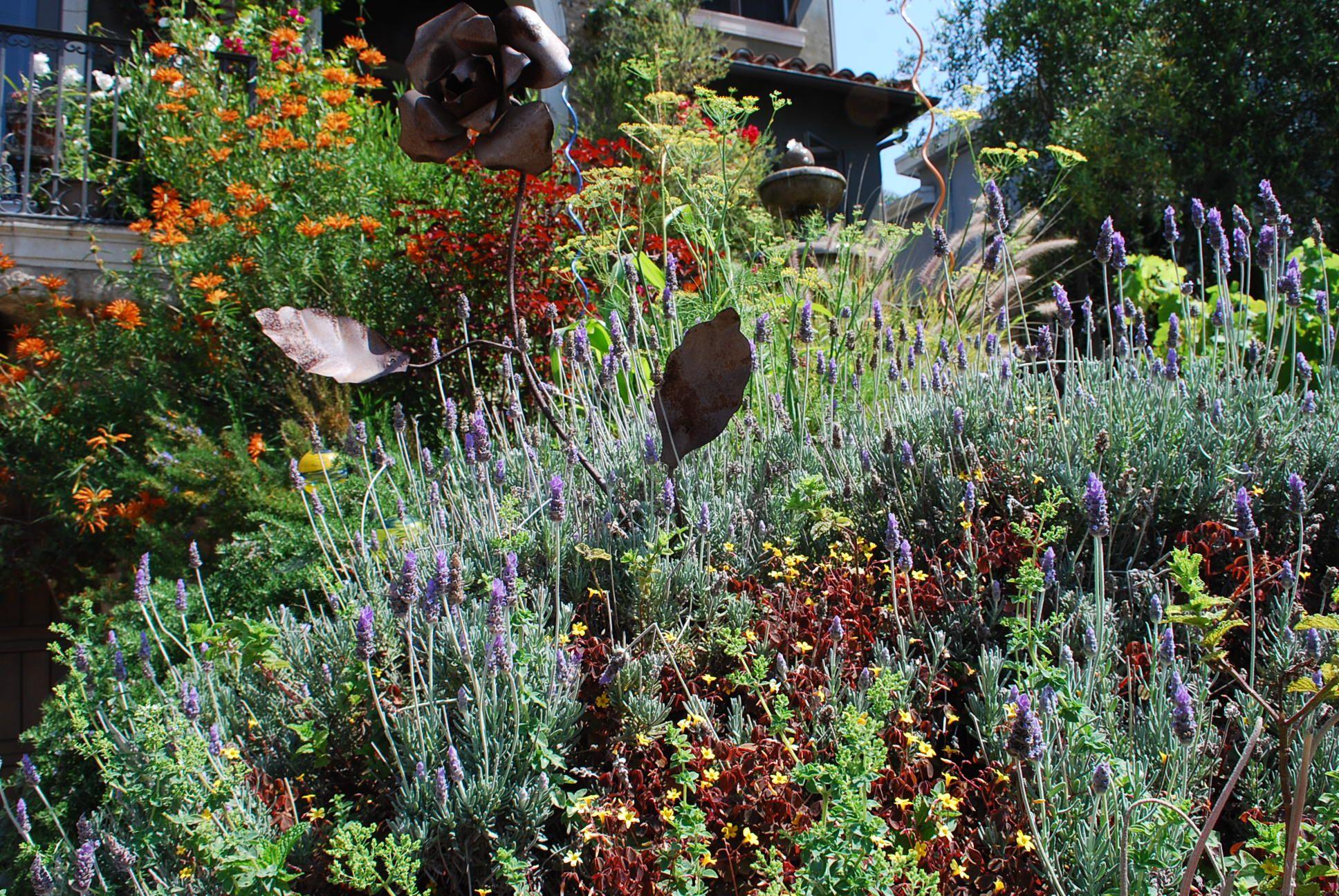 Hgel Frontyard Edible Landscape Rosemary Lavender Mint 400 x 300