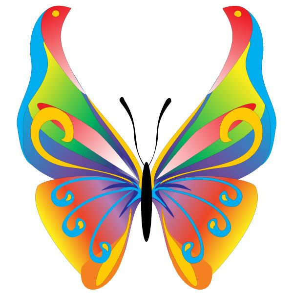 free butterfly clip art floral butterfly free vector graphic rh pinterest com free butterfly clip art images free butterfly clip art images