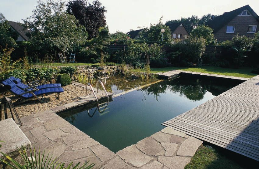 How To Build Your Own Natural Swimming Pool   Natural ...