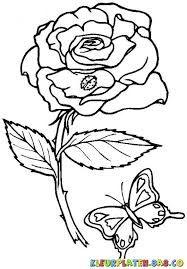 afbeeldingsresultaat voor roos kleurplaat dieren