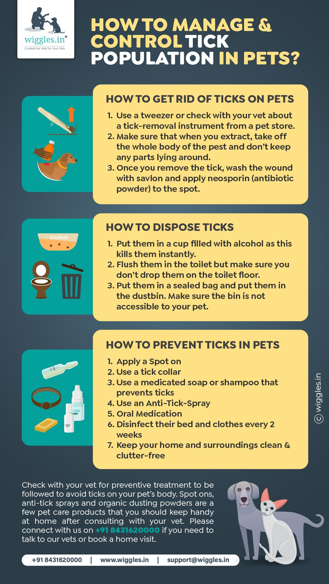 Pin On Pet Healthcare Infographic