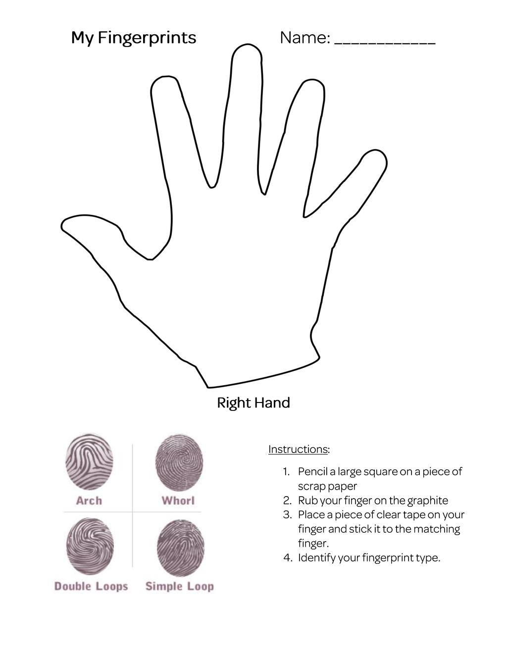 My Fingerprints Worksheet