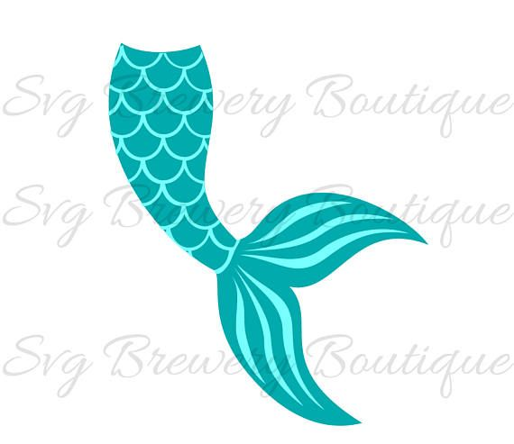 Mermaid Tail Clam Shell Svg Layered Png Dxf For Cricut Mermaid Clipart Mermaid Tail Mermaid Diy