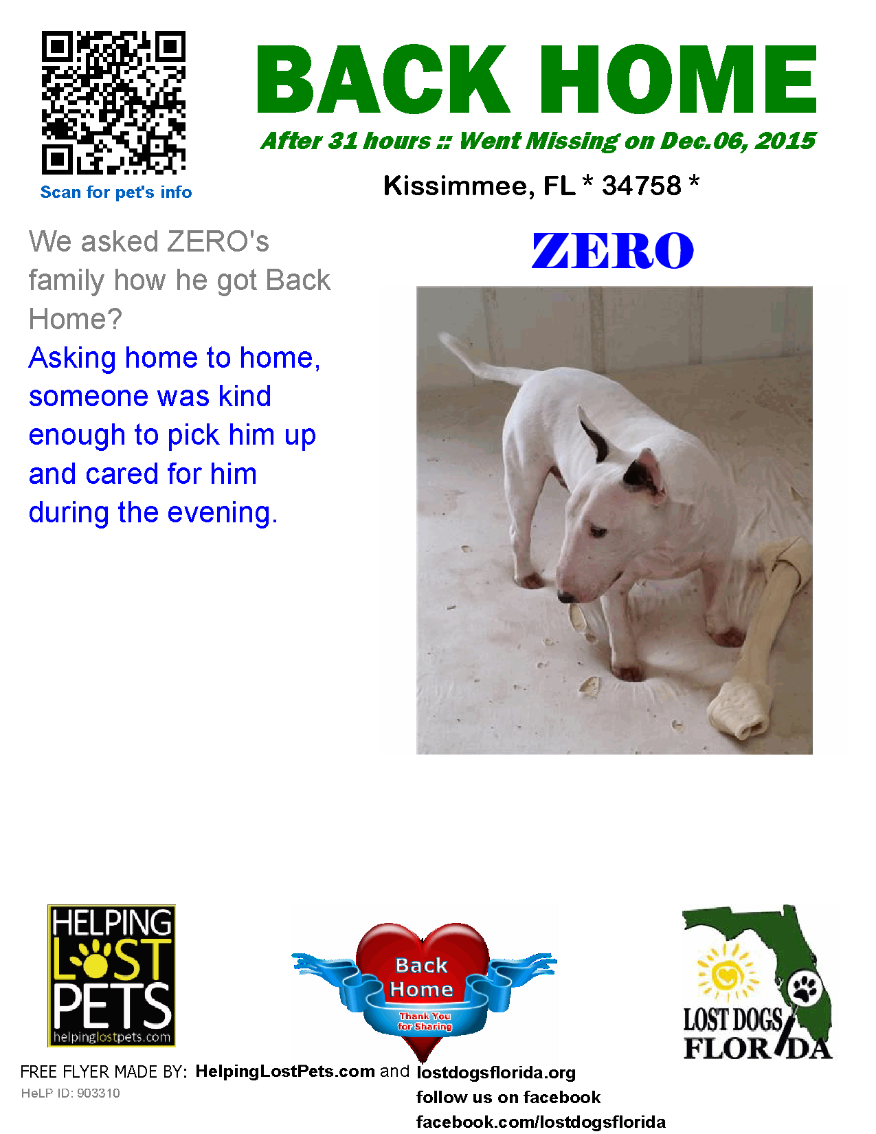 Helping Lost Pets Dog Bull Terrier Back Home Losing A Dog Bull Terrier Losing A Pet