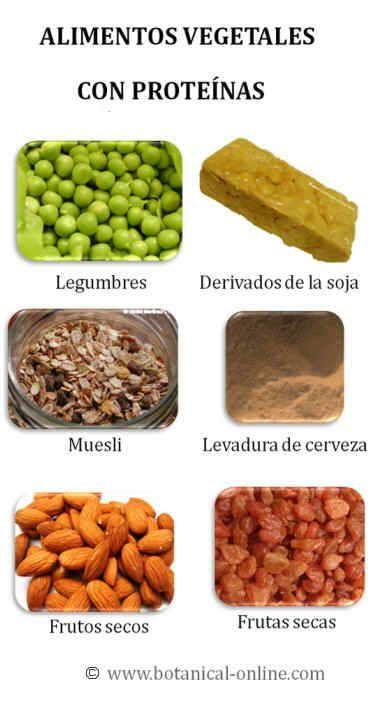 Alimentos ricos en proteinas workout pinterest prote na vegetales y alimentos - Alimentos vegetales ricos en proteinas ...