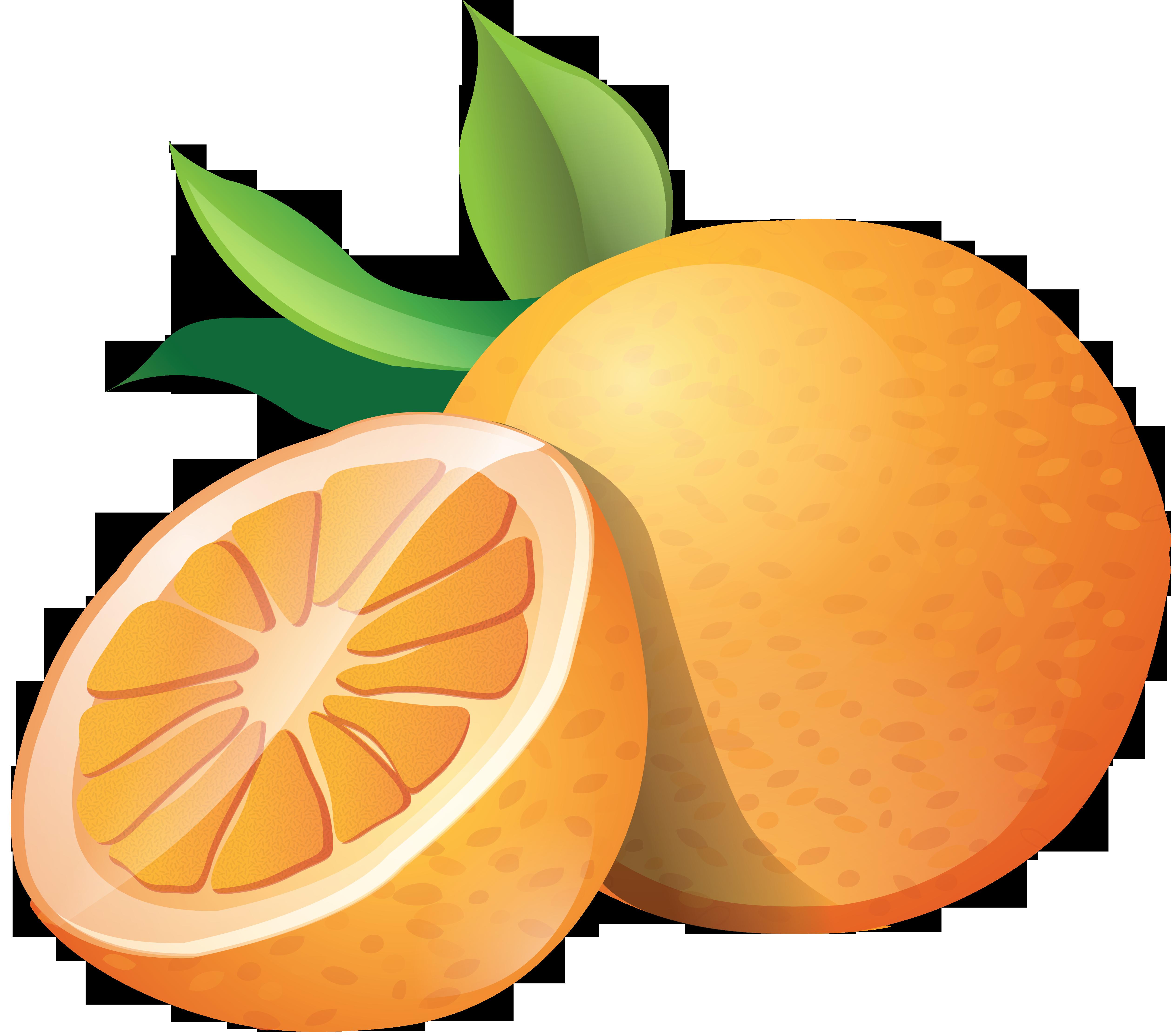 Orange Oranges Orange Oranges Png Images