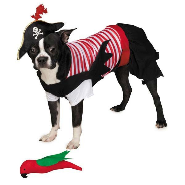Pirate Tails Dog Halloween Costume Pet Costumes Xs Xxl Zack Zoey