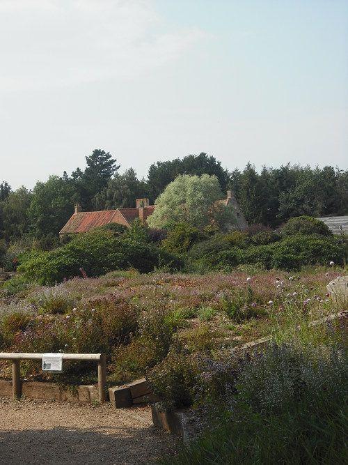 Pensthorpe - Norfolk