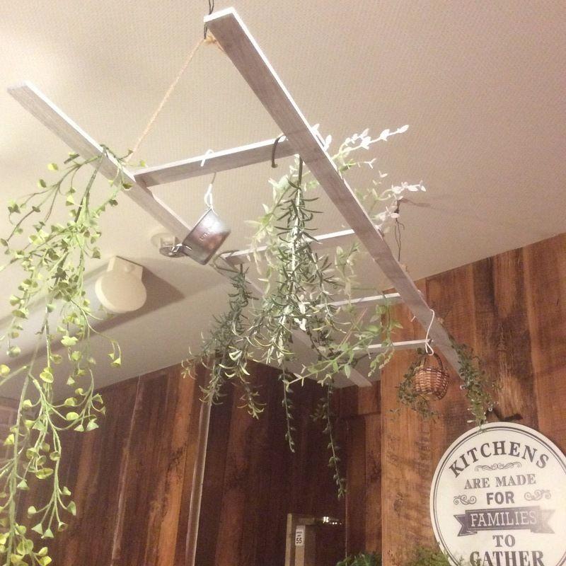 めっちゃ簡単ラダーdiy インテリア 観葉植物 吊るす ピクチャーレール