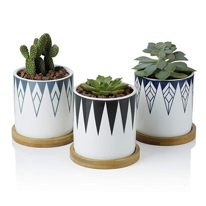 Inverted Triangle Set of 3 Greenaholics Succulent Plant Pots with Drainage Hole Succulent Planting Bamboo Trays 3 Inch Cylindrical Ceramic Planter for Cactus