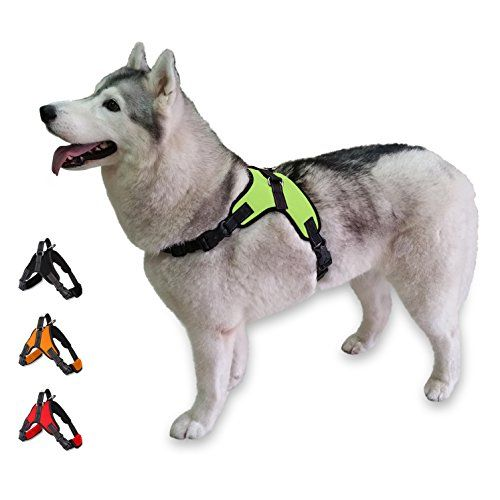 Escape Proof Dog Training Safety Harness Small Green Comfortable