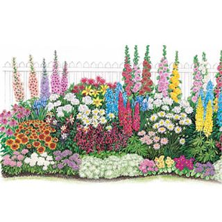 Pre Designed Perennial Gardens perennial flower garden designs preplanned sample plans for sun Endless Bloom Perennial Garden You Can Buy This Layout With All The Flowers From This