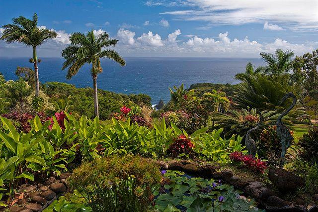 5737a0a5f9a8d9cd4b0974c6ab3a140c - Hana Maui Botanical Gardens Hana Hi