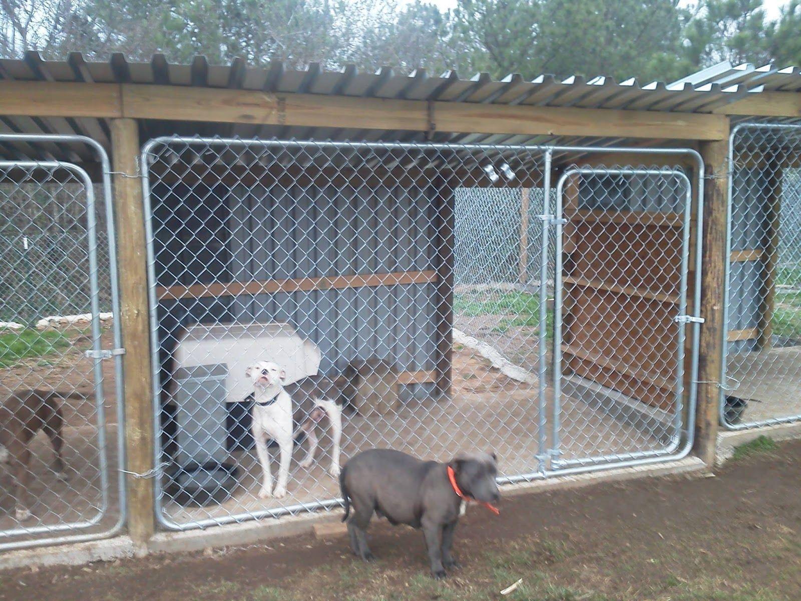 30 Clever Designs Of How To Build Backyard Dog Kennel Ideas Simphome Diy Dog Kennel Dog Boarding Kennels Dog Backyard