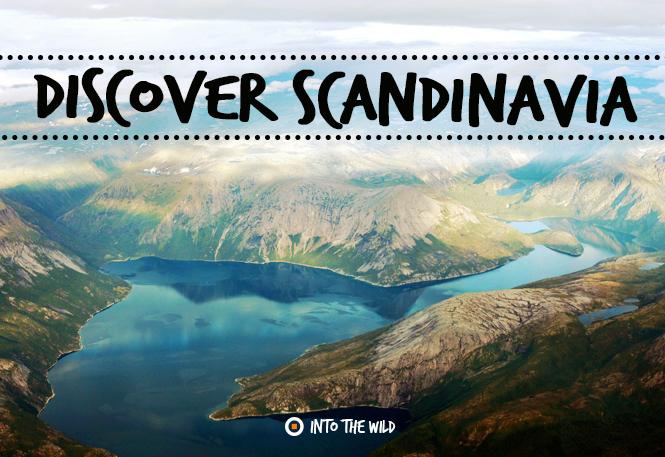 DiscoverScandinavia frontier.ac.uk | frontiergap.com #discover #explore #scandinavia #Denmark #norway #Sweden #travel #Euope