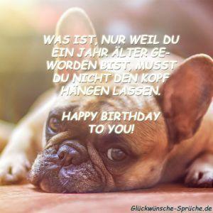 Geburtstagskarte Geburtstagswunsche Hund In Blumenwiese Amazon