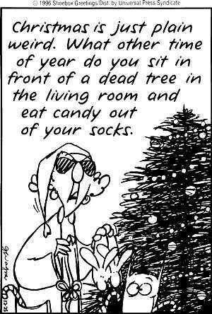 Maxine Christmas Christmas Quotes Funny Christmas Humor Holiday Humor