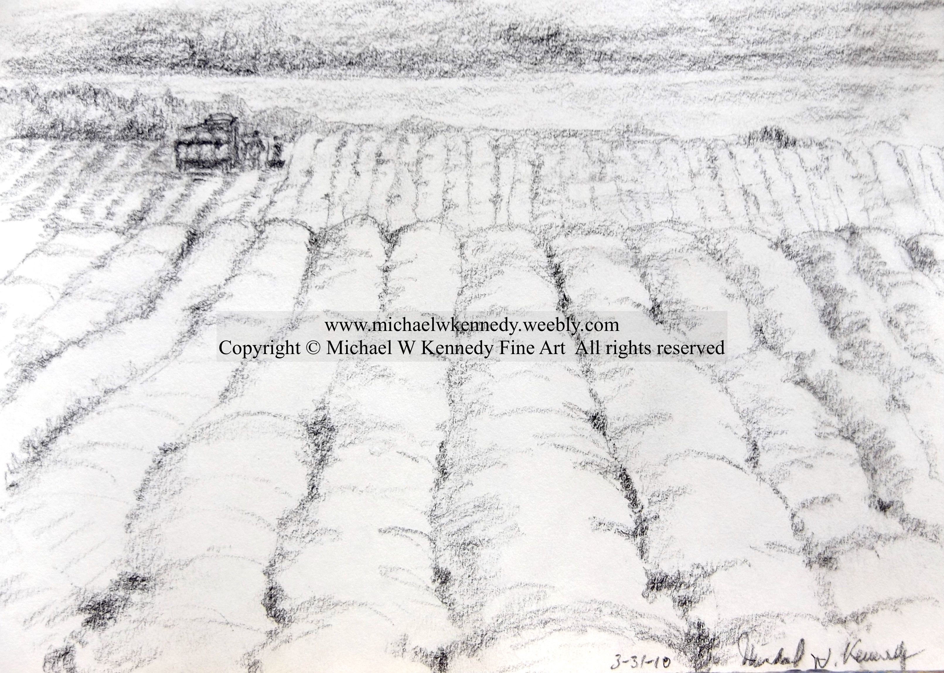 Harvesting 55 x 8 charcoal on sketch paper landscape 2010 harvesting x charcoal on sketch paper landscape copied from a coffee table book enjoy geotapseo Gallery