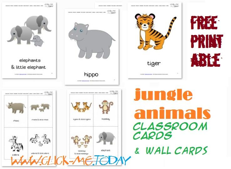 graphic relating to Free Printable Jungle Animals referred to as Cost-free Printable Jungle Pets Flashcards - Jungle Pets