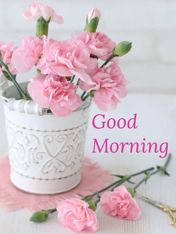 Pin By Fufu On Good Morning Beautiful Flower Arrangements Pretty Flowers Pink Flowers Good morning pink flowers hd wallpaper