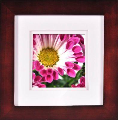Pin By Louise Sommerfeld On Frames Gallery Frame Frame Michaels Frames