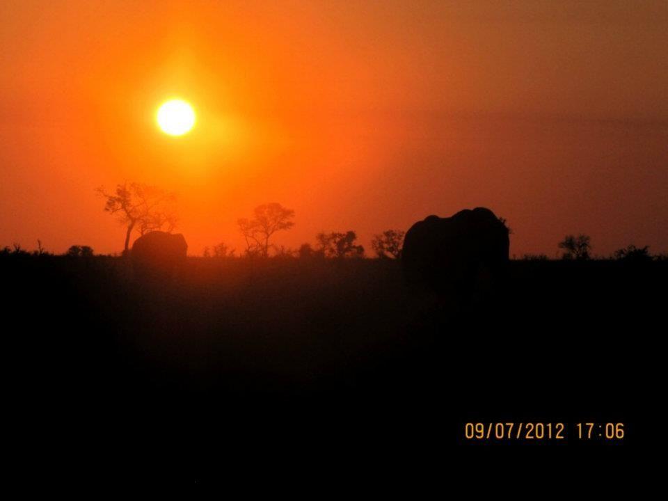 Sunset over the Kruger National Park South Africa