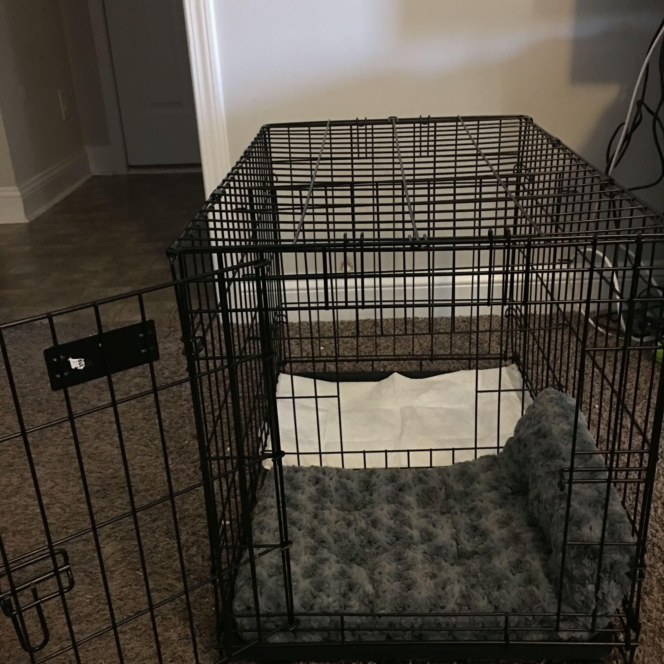 Diy Puppy Apartment