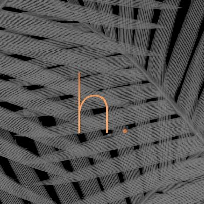 Dixieland Designs |  h. Branding + Design for a Retail Space