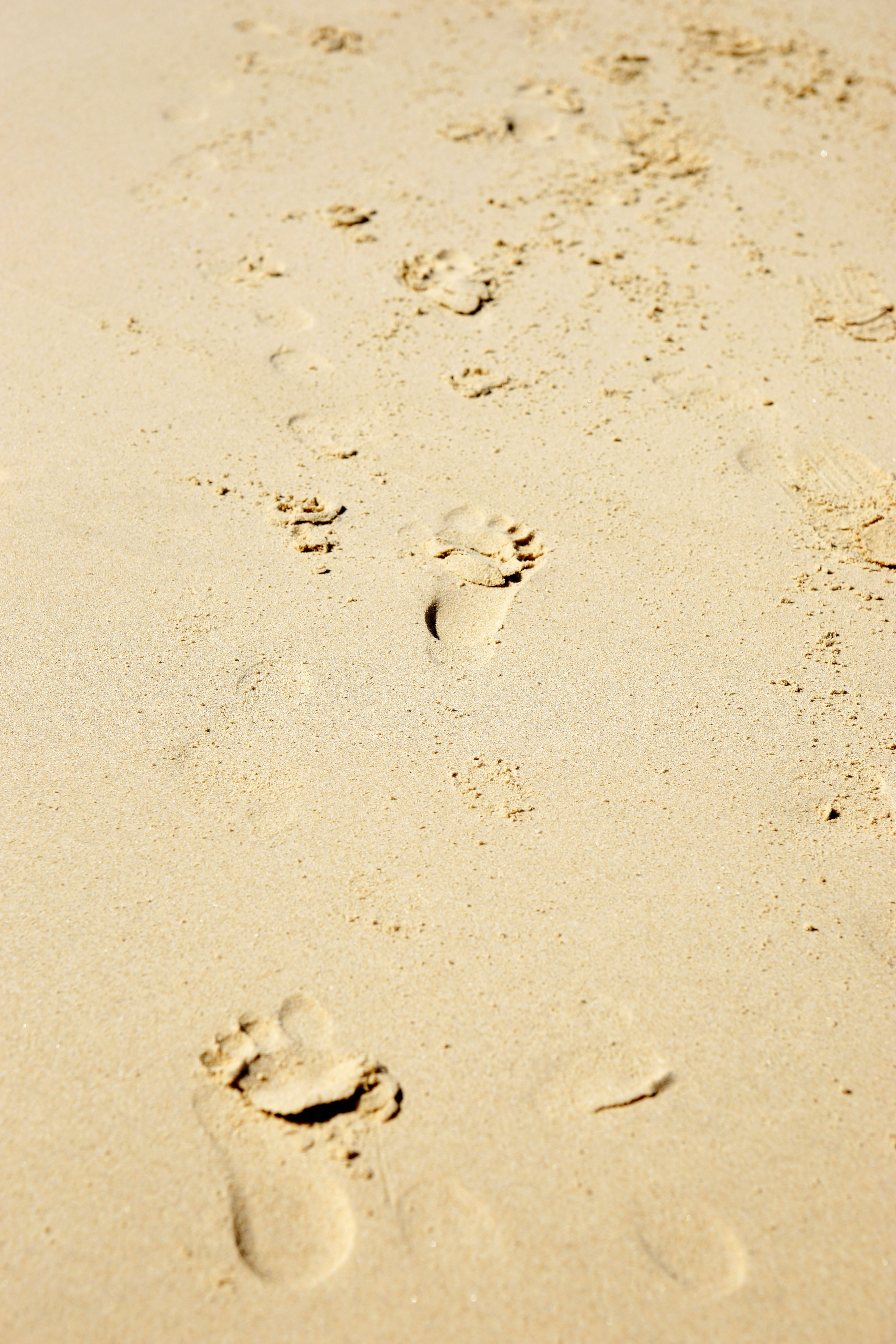 Footprints In The Sand Pictures Free