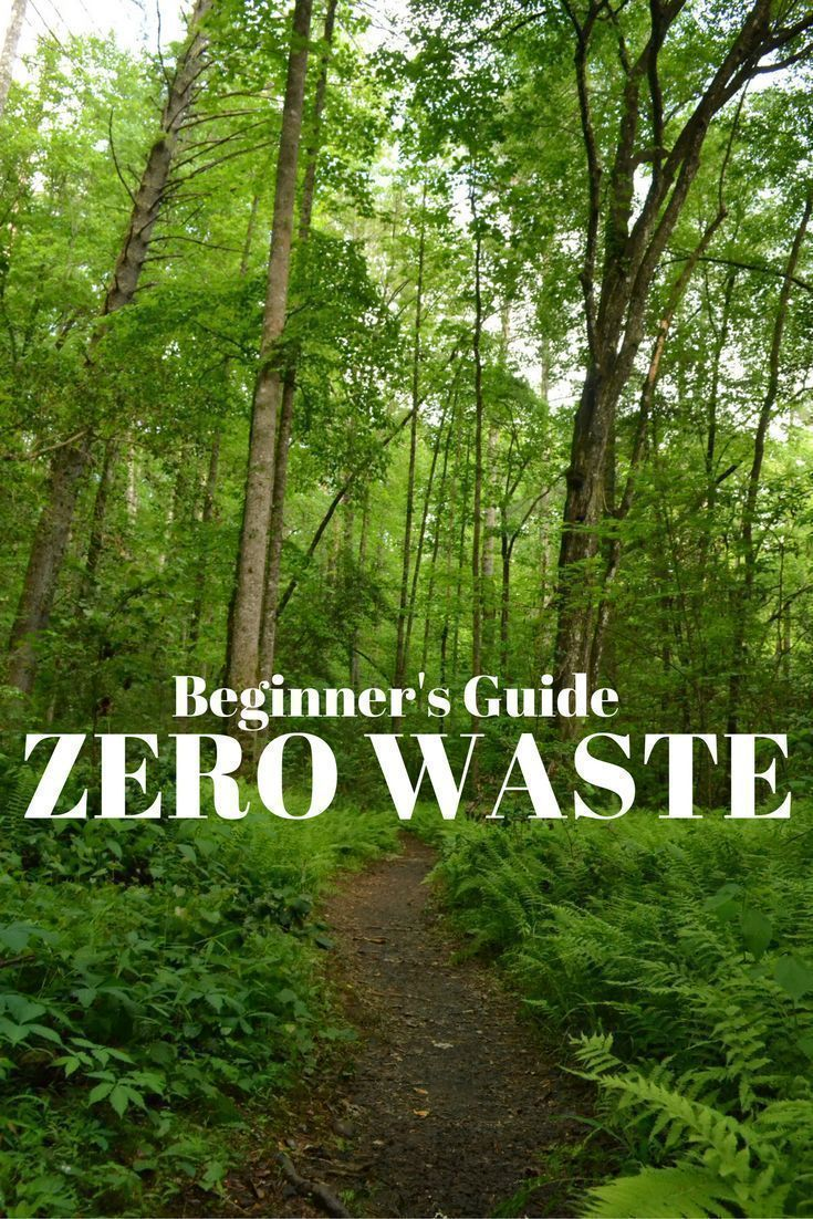 beginners guide to zero waste