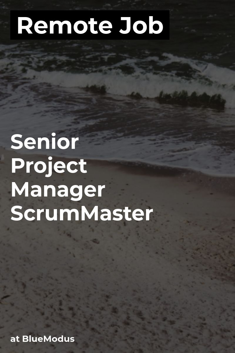 Remote Senior Project Manager & ScrumMaster at BlueModus