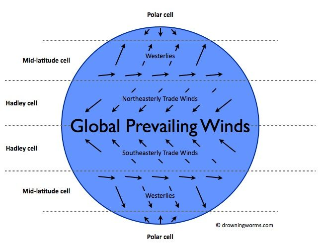 Prevailing Winds Map Global prevailing winds map #prevailingwinds #winds | True | Fish