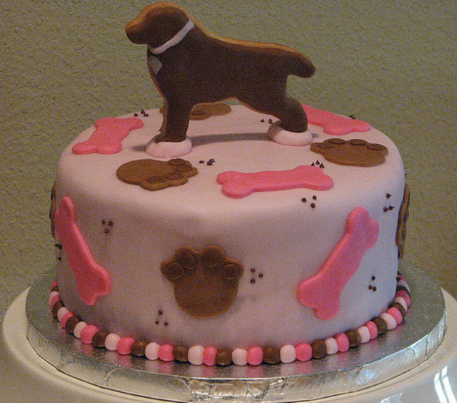 Dog Lover Birthday Cake