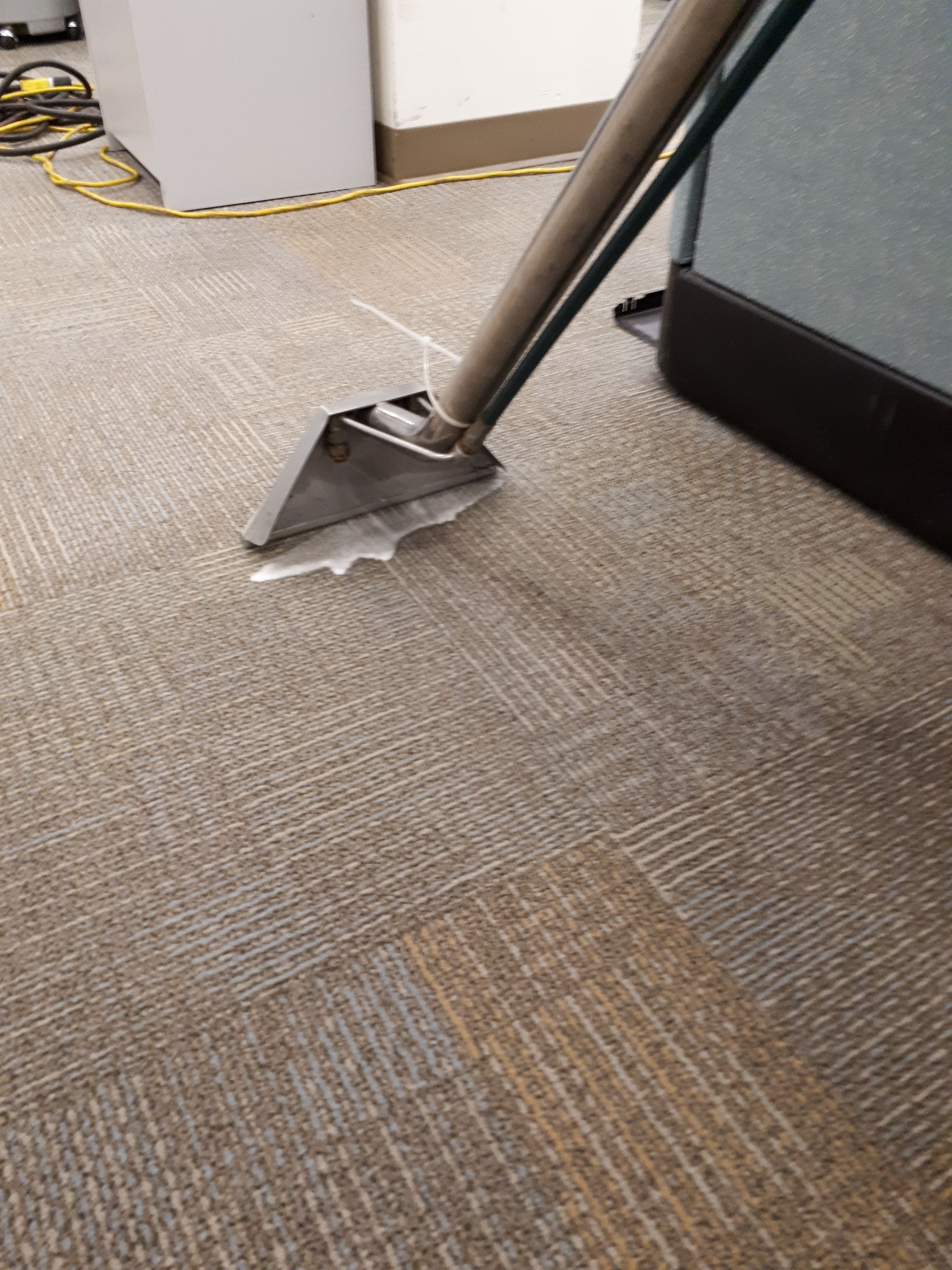 0ttawa Carpet Cleaning Steam Clean Carpet How To Clean Carpet Cleaning Upholstery