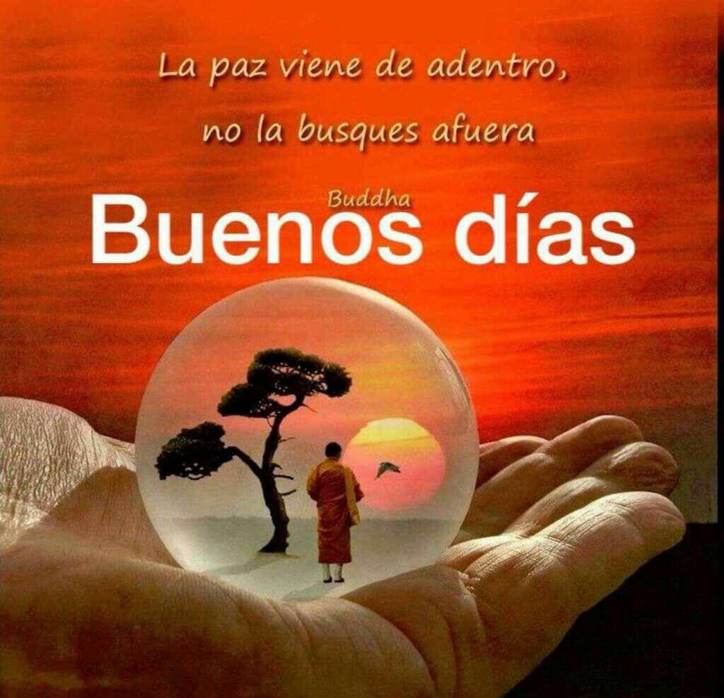 Feliz Sabado Frases Bonitas De Buenos Días Saludos De