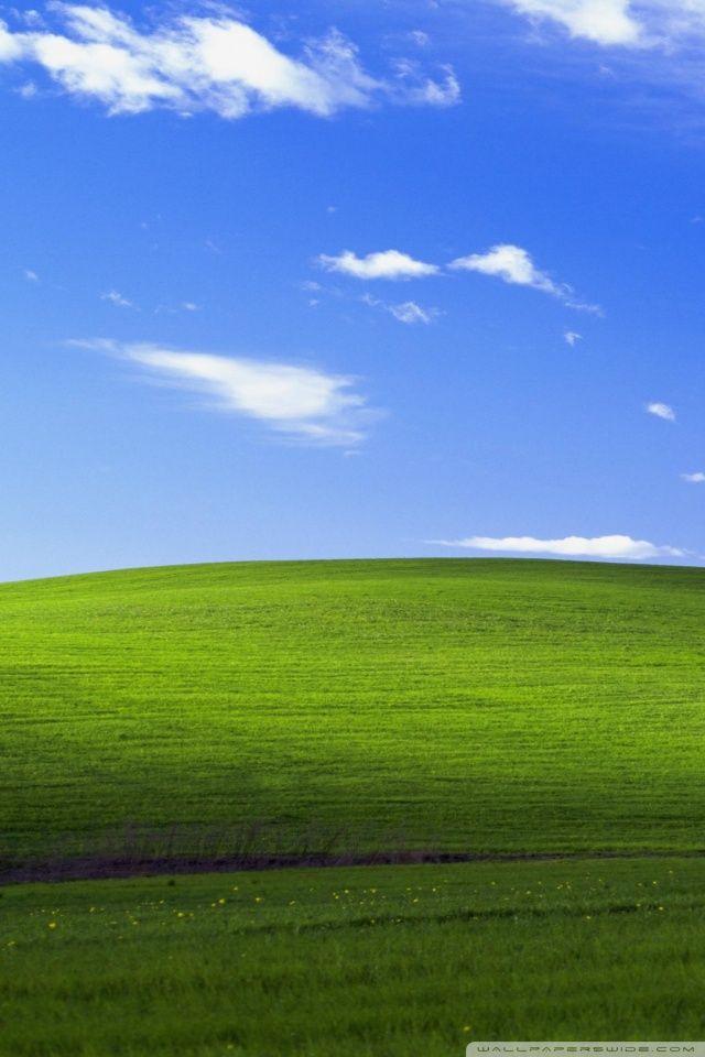Windows XP HD desktop wallpaper Widescreen High