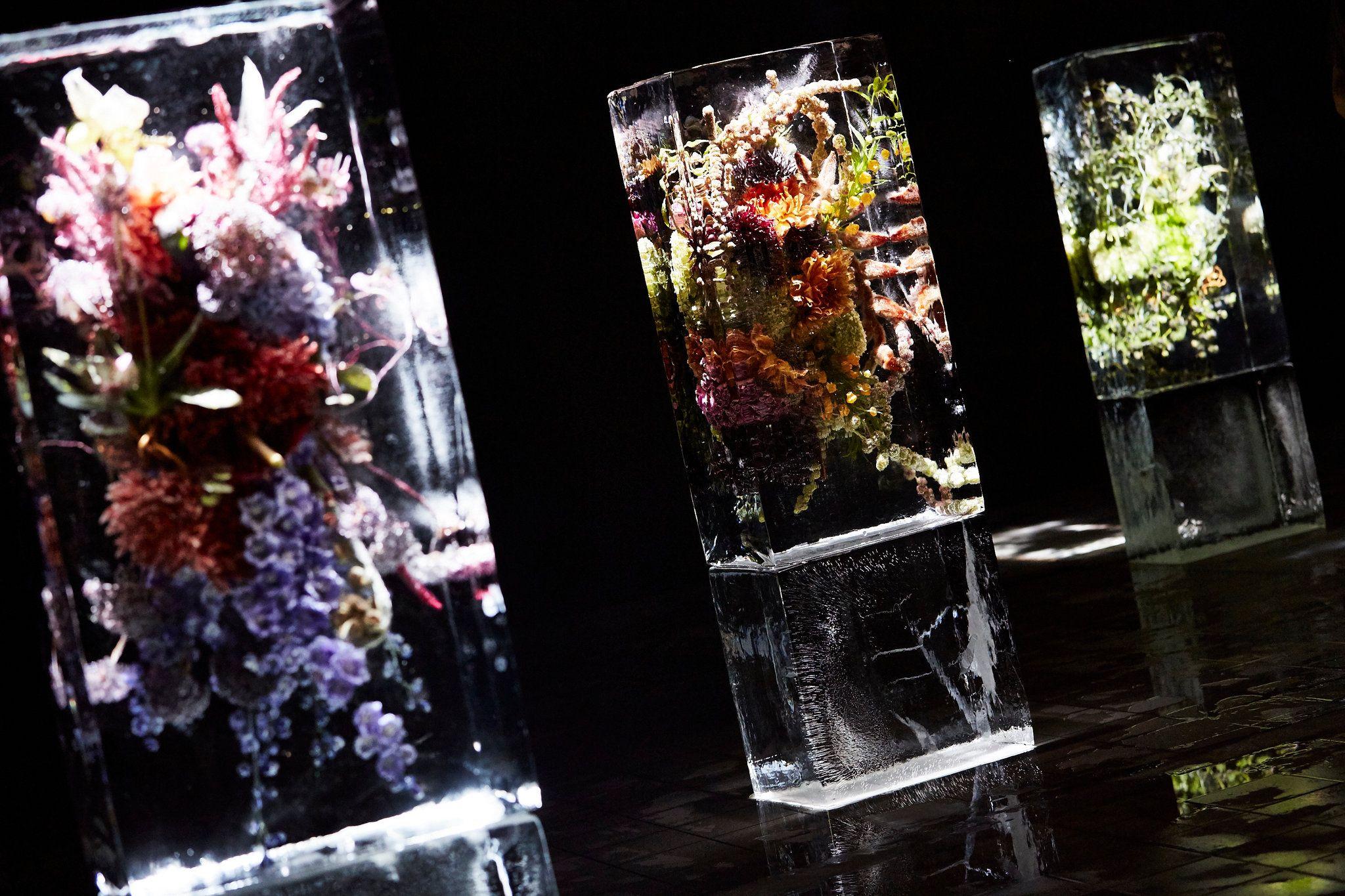 "Azuma Makoto's ""Iced Flowers"" at Dries Van Noten"