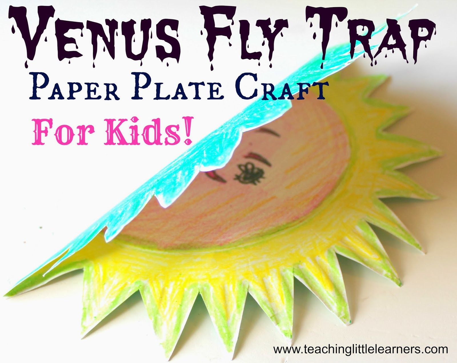 Teaching Little Learners Venus Fly Trap Paper Plate Craft
