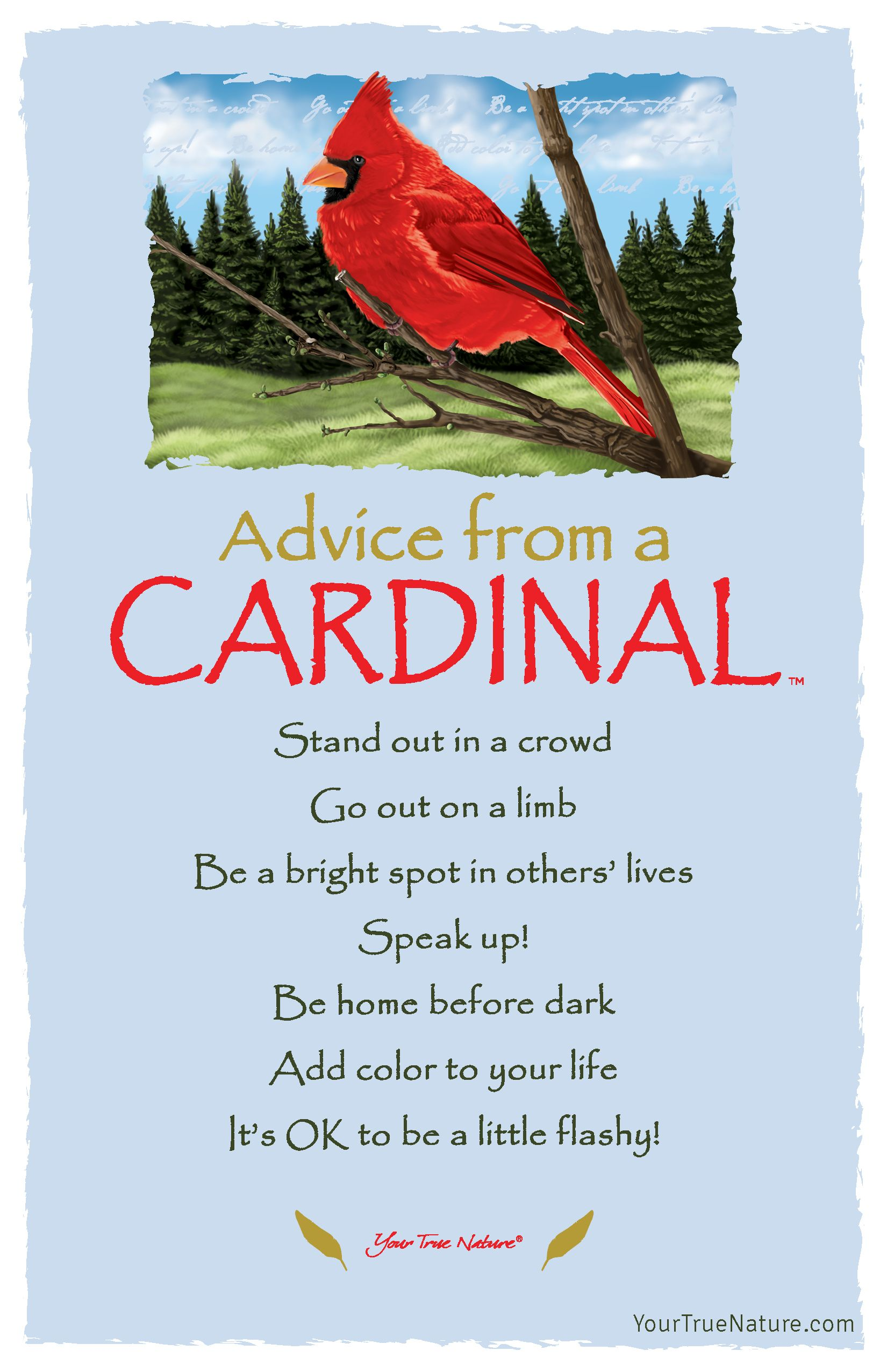 "Missing Mom Quotes: Mother Advice From A Cardinal: ""Be Home Before Dark."" Your"