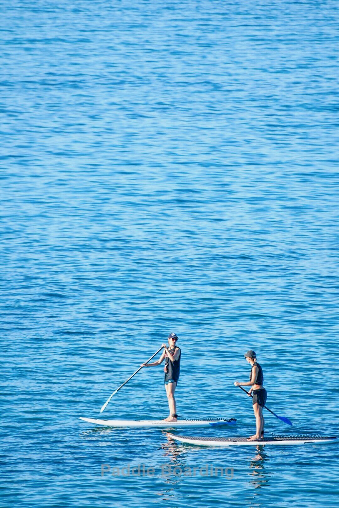 maui paddle boards   Paddle boarding, Standup paddle, Paddle