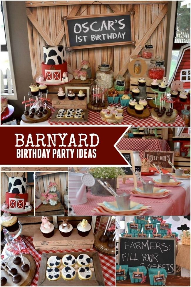 Rustic Barnyard Themed Birthday Party