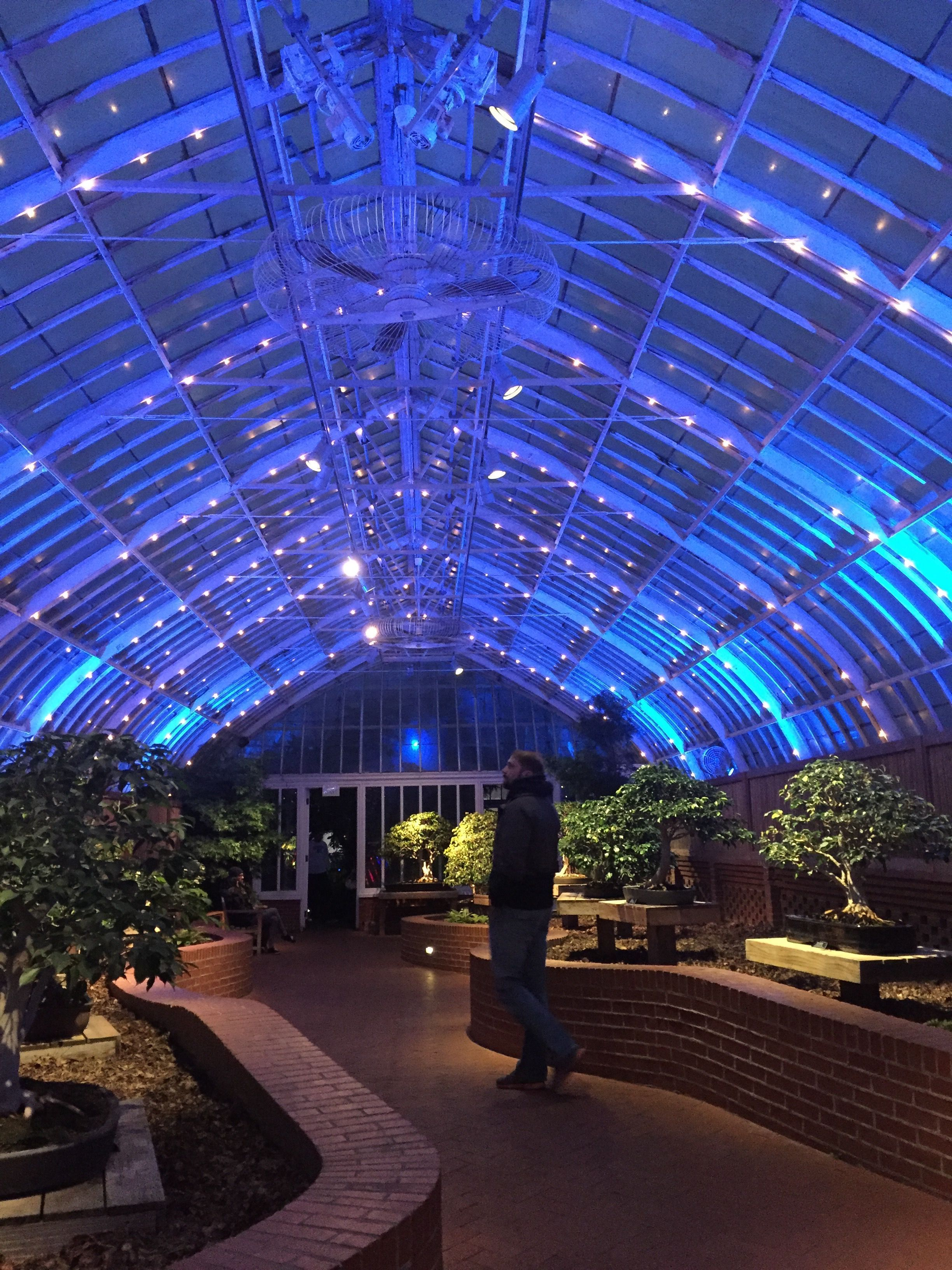 9 Things You Should Know Before You Visit Phipps Conservatory And